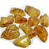 Amber or Copal