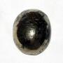 8020 - Pyrite