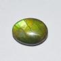 AGS152 - Ammonite