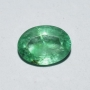 ASE052 - Indian Emerald