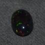 FD209 - Black Opal