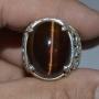 GST1052 - Tiger Eye