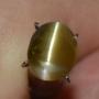 GST1264 - Honey Color Chrysoberl Cat Eye
