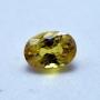 GST1310 - Yellow Sapphire