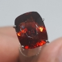 GST1348 - Hessonite Garnet