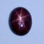 GST1463 - Star Ruby