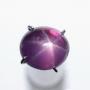 HJ7515 - Sapphire Mata Udang