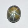 LTG539 - Star Green Sapphire