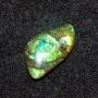 NAM485 - Ammolite