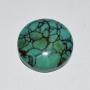PH6295C - Turquoise
