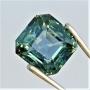 WF0877 - Greenish Blue Sapphire